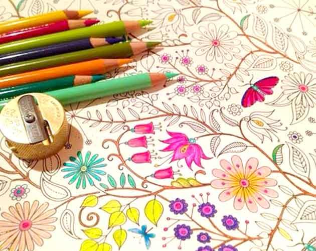 ideias para pintar o jardim secretofebre dos livros de colorir para